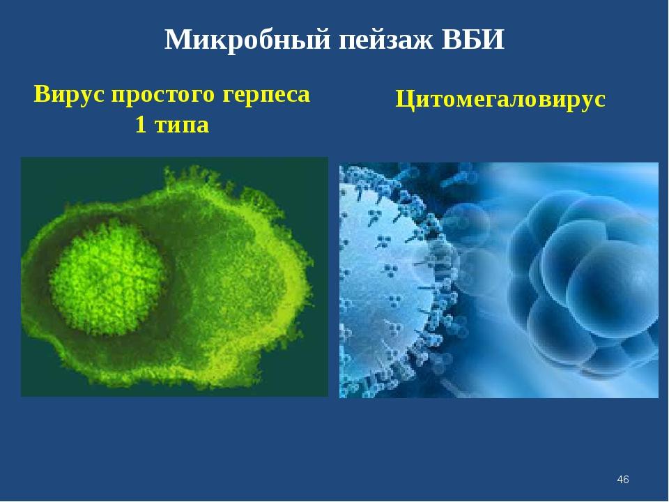 Микробный пейзаж ВБИ Вирус простого герпеса 1 типа Цитомегаловирус *