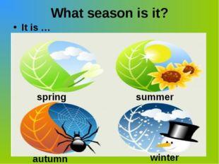 What season is it? It is … winter summer autumn spring