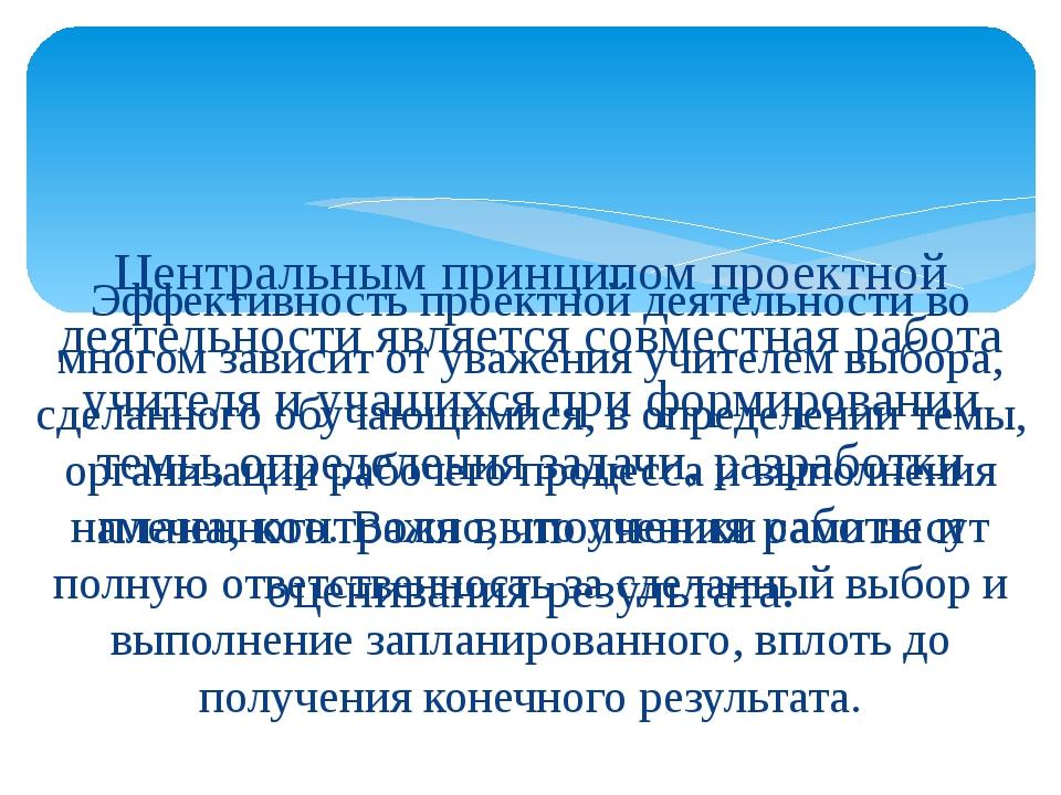 Центральным принципом проектной деятельности является совместная работа учит...