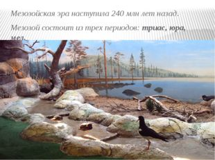 Мезозойская эра наступила 240 млн лет назад. Мезозой состоит из трех периодов