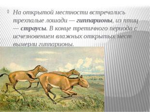 На открытой местности встречались трехпалые лошади —гиппарионы,из птиц —ст