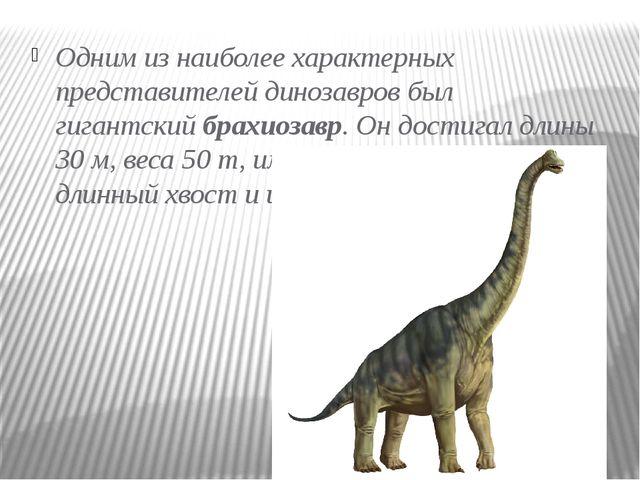 Одним из наиболее характерных представителей динозавров был гигантскийбрахио...