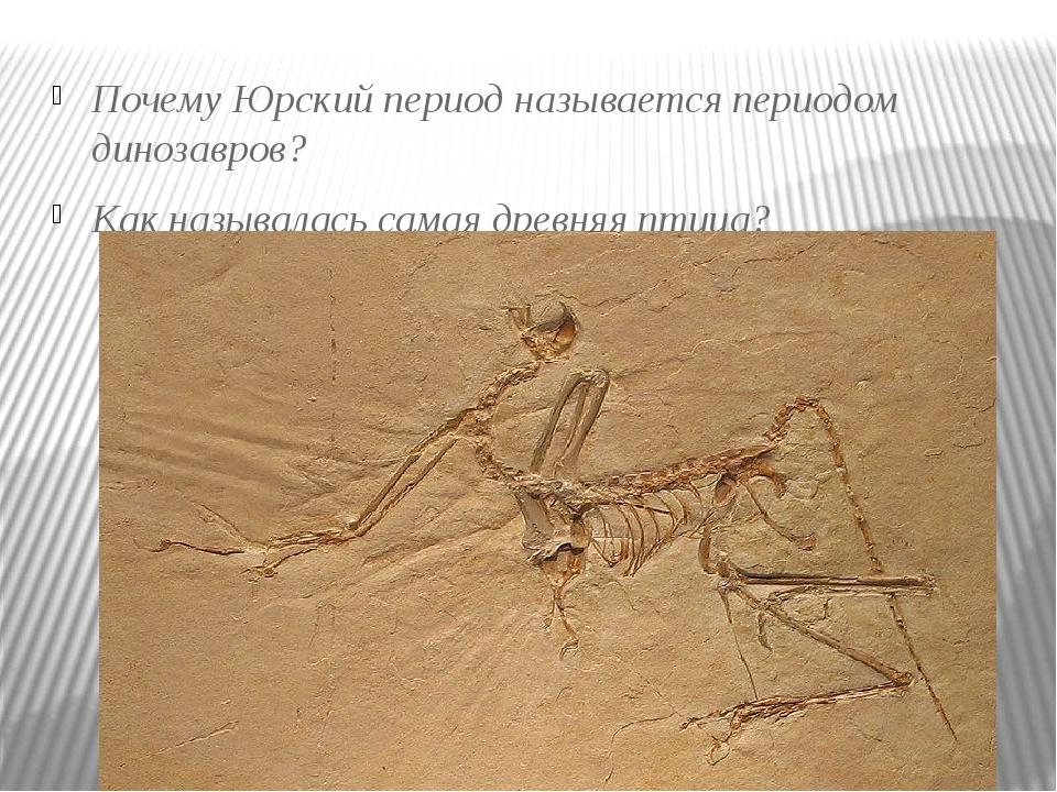 Почему Юрский период называется периодом динозавров? Как называлась самая дре...