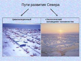 Пути развития Севера  Цивилизационный«Экологический заповедник» человечества
