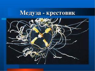 Медуза - крестовик