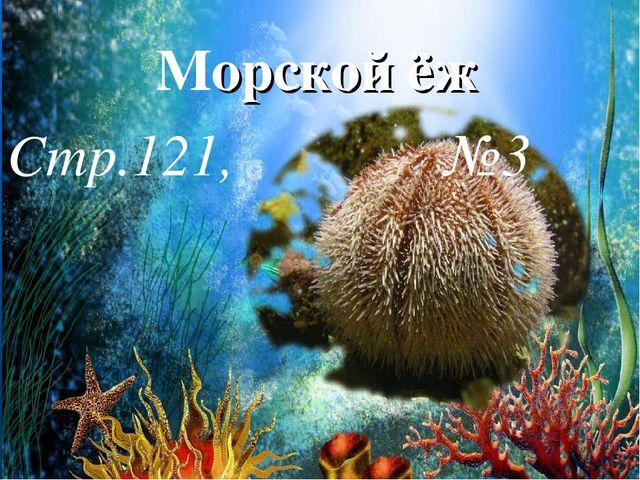 Морской ёж Стр.121, №3