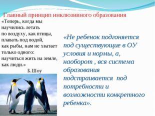 Главный принцип инклюзивного образования «Теперь, когда мы научились летать