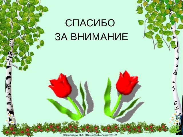 СПАСИБО ЗА ВНИМАНИЕ Матюшкина А.В. http://nsportal.ru/user/33485 Матюшкина А...