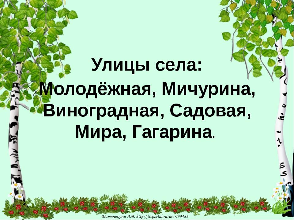Улицы села: Молодёжная, Мичурина, Виноградная, Садовая, Мира, Гагарина. Матю...