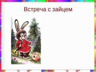 Встреча с зайцем