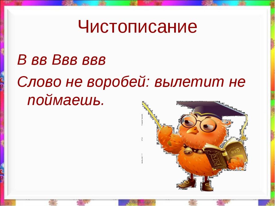Чистописание В вв Ввв ввв Слово не воробей: вылетит не поймаешь.