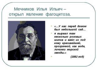 Мечников Илья Ильич – открыл явление фагоцитоза. «…У нас перед домом был неб