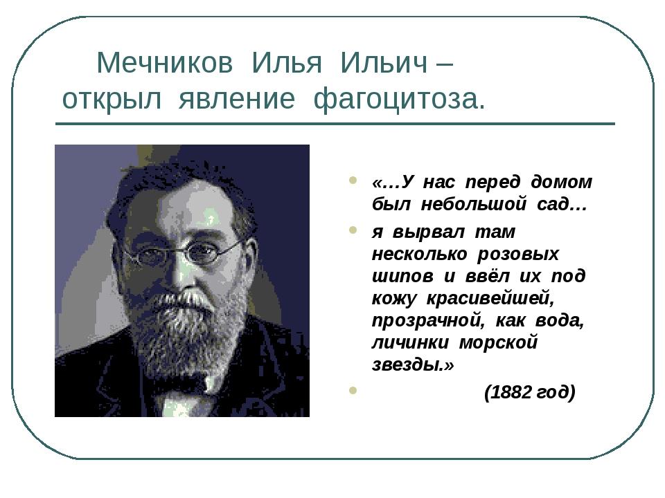 Мечников Илья Ильич – открыл явление фагоцитоза. «…У нас перед домом был неб...