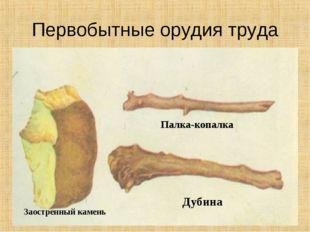 Первобытные орудия труда * Заостренный камень Палка-копалка Дубина