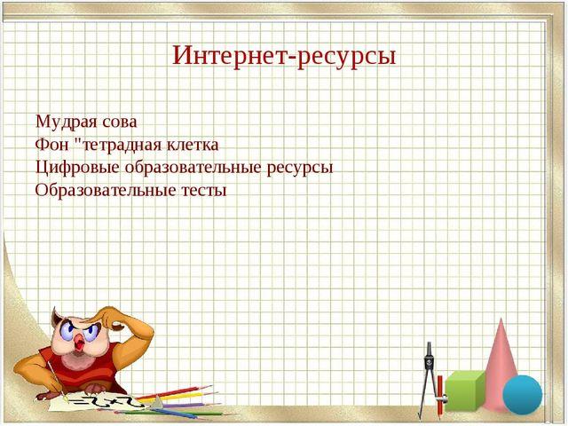 """Интернет-ресурсы Мудрая сова Фон """"тетрадная клетка Цифровые образовательные р..."""
