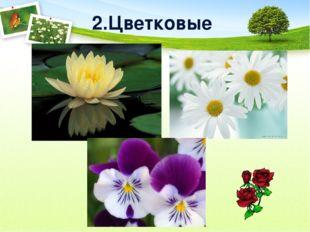 2.Цветковые