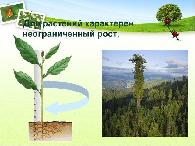 Для растений характерен неограниченный рост.