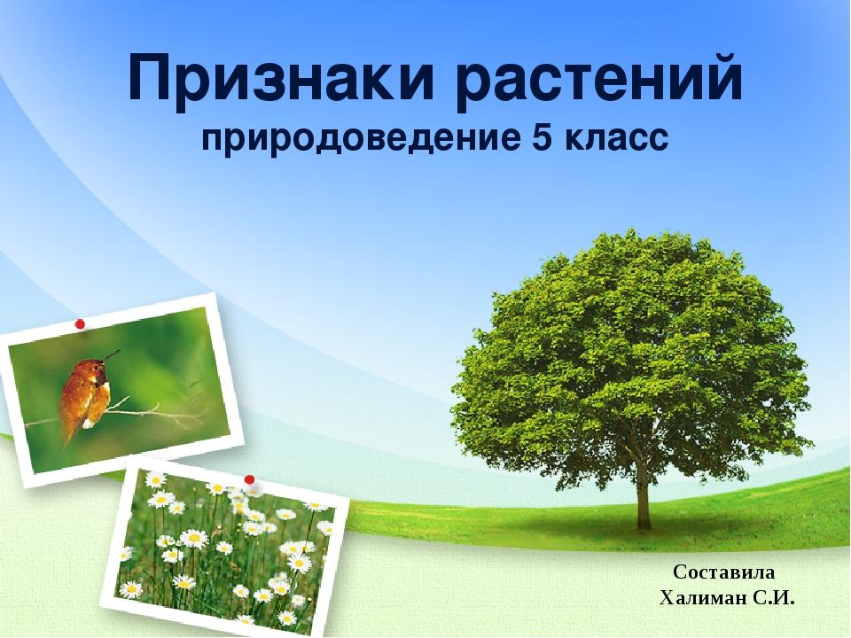 Признаки растений природоведение 5 класс Составила Халиман С.И.