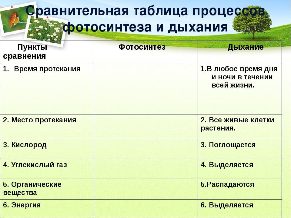 холодные характеристика процесса фотосинтеза растений вами огромный список
