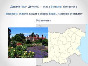 Дружба (болг. Дружба) — село в Болгарии. Находится в Видинской области, входи