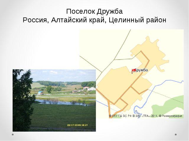 Поселок Дружба Россия, Алтайский край, Целинный район