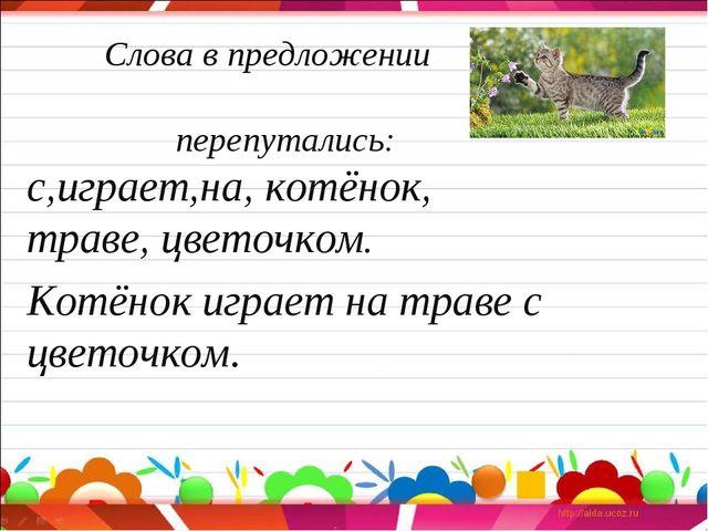 Слова в предложении перепутались: с,играет,на, котёнок, траве, цветочком. Ко...