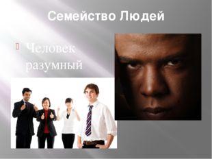 Семейство Людей Человек разумный