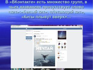 В «ВКонтакте» есть множество групп, в чьих названиях присутствует слово «кит»