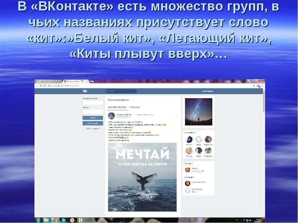 В «ВКонтакте» есть множество групп, в чьих названиях присутствует слово «кит»...
