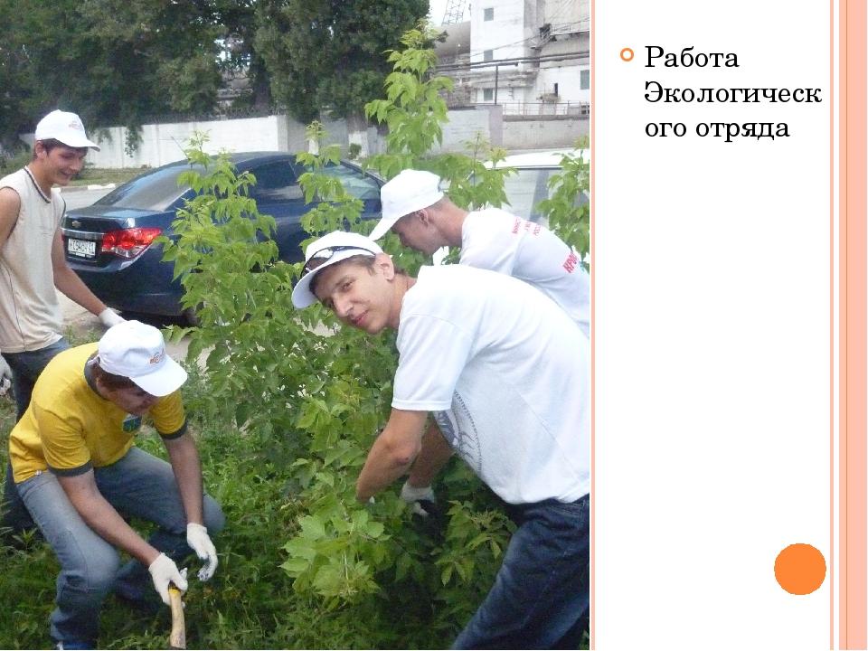 Работа Экологического отряда