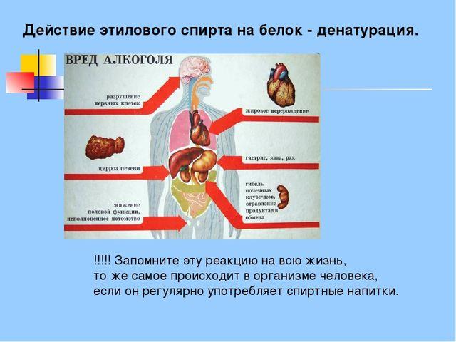 Действие этилового спирта на белок - денатурация. !!!!!Запомните эту реакцию...