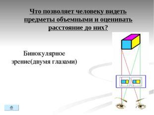 Что позволяет человеку видеть предметы объемными и оценивать расстояние до ни