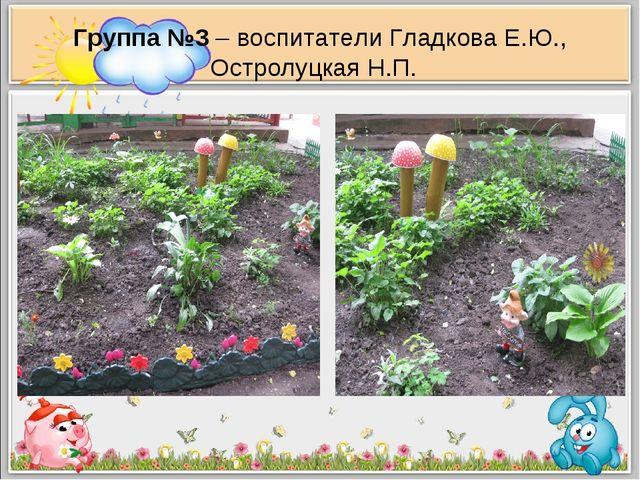 Группа №3 – воспитатели Гладкова Е.Ю., Остролуцкая Н.П.