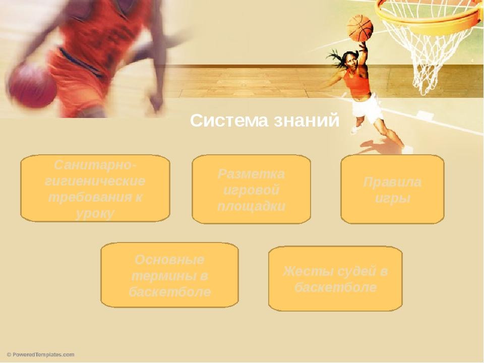 Система знаний Правила игры Основные термины в баскетболе Санитарно-гигиениче...