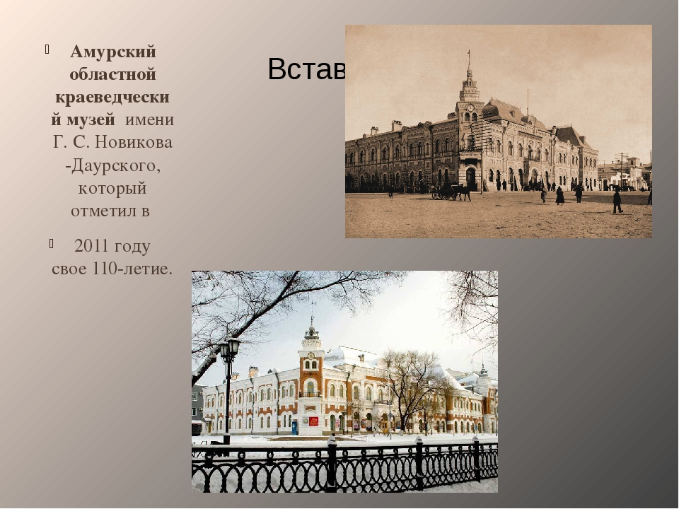 Амурский областной краеведческий музей имени Г.С.Новикова-Даурского, котор...