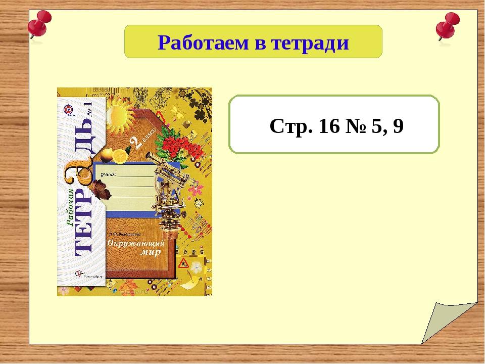 Работаем в тетради Стр. 16 № 5, 9