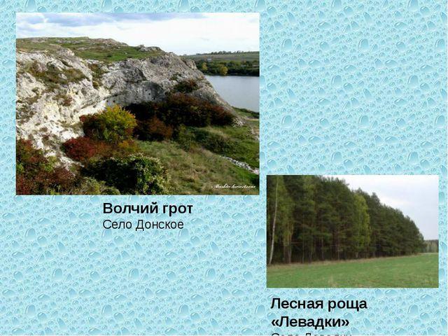 Волчий грот Село Донское Лесная роща «Левадки» Село Левадки