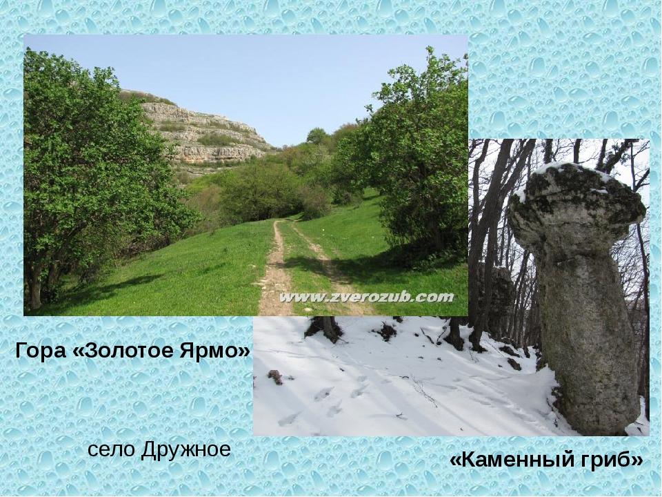 Гора «Золотое Ярмо» «Каменный гриб» село Дружное
