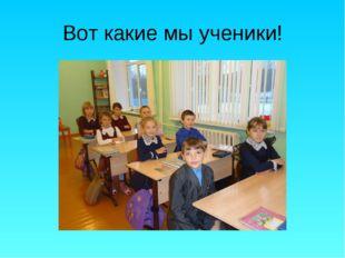 Вот какие мы ученики!