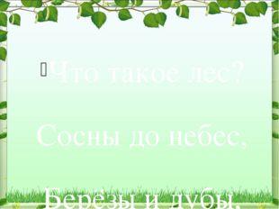 Что такое лес? Сосны до небес, Берёзы и дубы, Ягоды, грибы... Звериные тропин