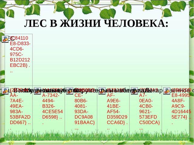 ЛЕС В ЖИЗНИ ЧЕЛОВЕКА: