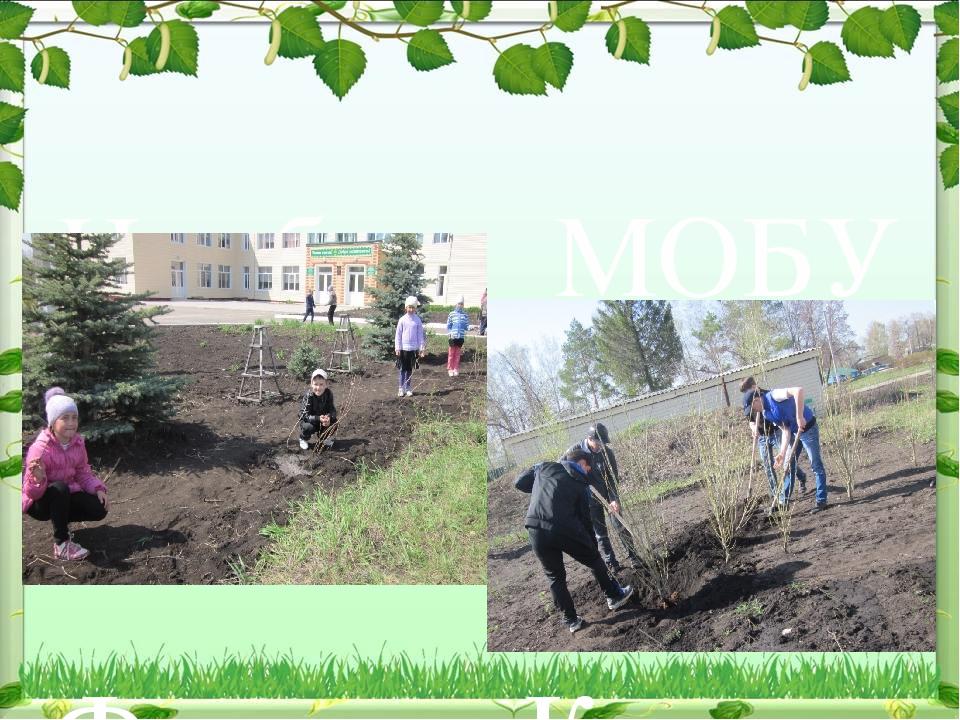 На базе МОБУ СОШ имени Фатиха Карима функционирует школьное лесничество «Бере...