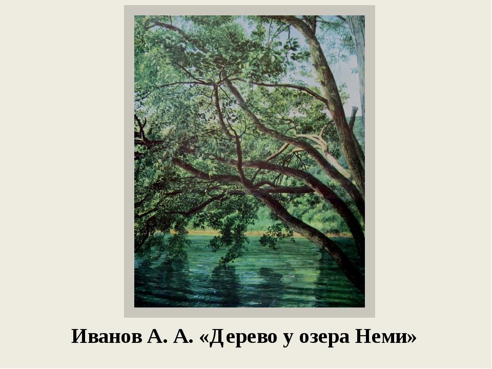Иванов А. А. «Дерево у озера Неми»