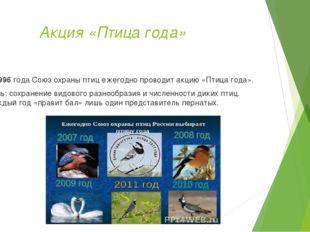 Акция «Птица года» С 1996 года Союз охраны птиц ежегодно проводит акцию «Пти