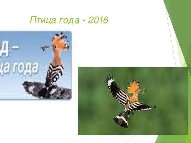 Птица года - 2016