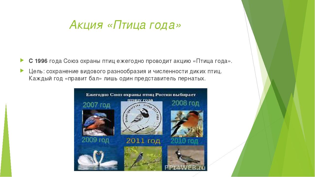 Акция «Птица года» С 1996 года Союз охраны птиц ежегодно проводит акцию «Пти...