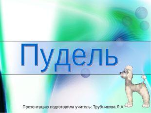 Презентацию подготовила учитель: Трубникова Л.А.