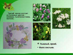 Третий венок состоит из полевых цветов : клевера, тысячелистника, калгана. +