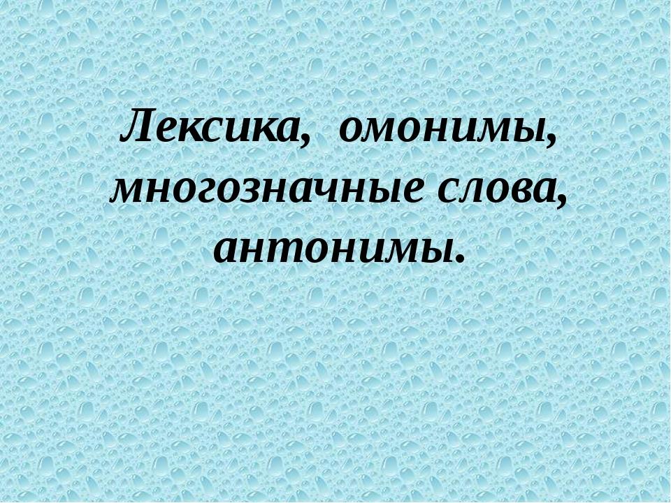 Лексика, омонимы, многозначные слова, антонимы.