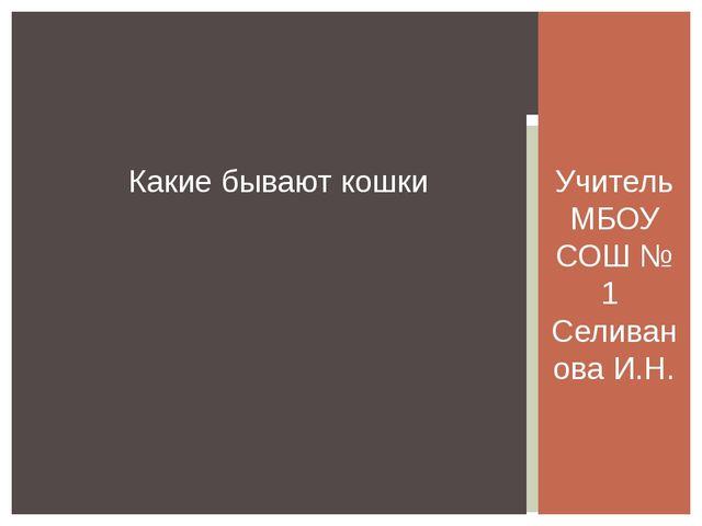 Учитель МБОУ СОШ № 1 Селиванова И.Н. Какие бывают кошки